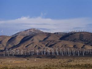 View of Windmills on a Wind Energy Farm by Marc Moritsch