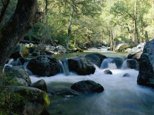 Woodland View of a Small Creek Flowing over Boulders by Marc Moritsch