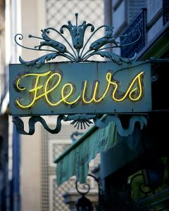 Fleurs by Marc Olivier