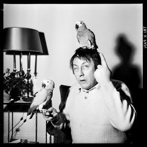 Raymond Devos with Two Parrots in Colmar, August 3968 by Marcel Begoin