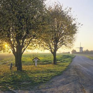 Limburg, Crucifix Along the Road and the Windmill Van Tienhovenmolen Near Wifshuis by Marcel Malherbe