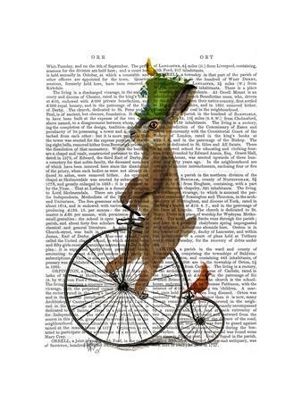 https://imgc.artprintimages.com/img/print/march-hare-on-penny-farthing_u-l-q11ajya0.jpg?p=0