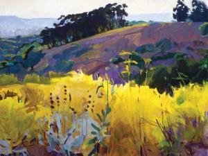 Late Sun, Eucalyptus on the Ridge by Marcia Burtt