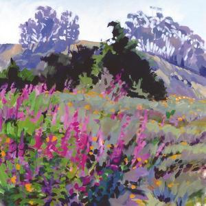 Spring Haze, Eucalyptus on the Ridge by Marcia Burtt
