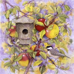 Chickadee & Apples by Marcia Matcham
