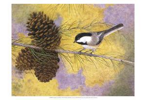 Chickadee in the Pines II by Marcia Matcham