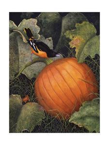 Oriole & Pumpkin by Marcia Matcham
