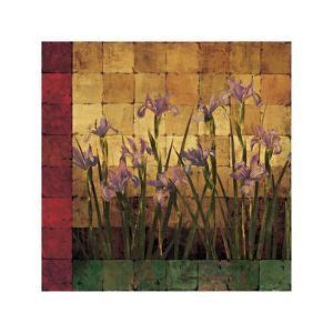 Iris Garden by Marcia Wells
