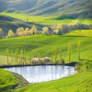 Fields by the Pond by Marcin Sobas