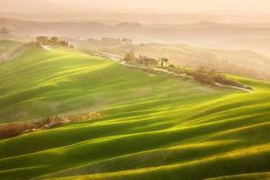 Late Afternoon by Marcin Sobas