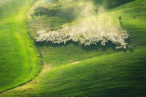 Lemming Like Rush by Marcin Sobas