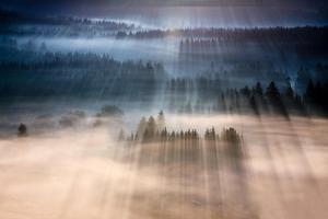 Rays by Marcin Sobas