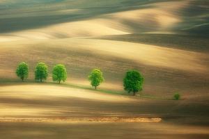 Six by Marcin Sobas