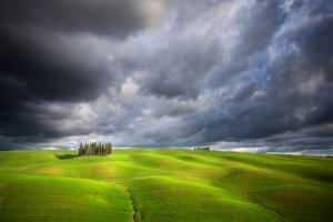 Stormy Cypresses by Marcin Sobas