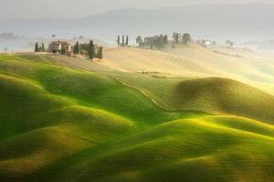 The Farm by Marcin Sobas