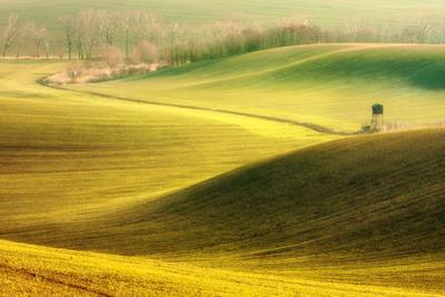 Two Pulpits by Marcin Sobas