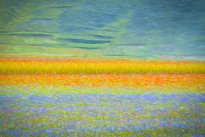 Field Colors by Marco Carmassi