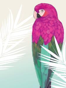Tropical Bird 2 by Marco Fabiano