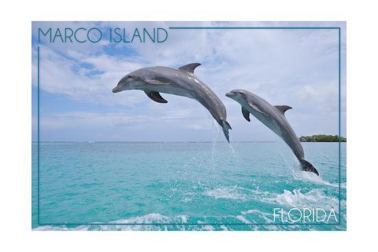 Marco Island, Florida - Jumping Dolphins-Lantern Press-Art Print