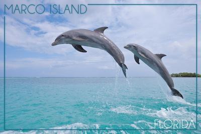 https://imgc.artprintimages.com/img/print/marco-island-florida-jumping-dolphins_u-l-q1gql6x0.jpg?p=0