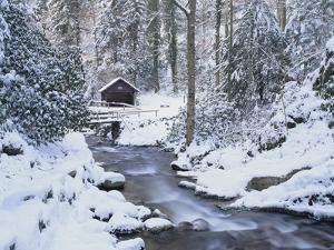 Cottage in a Forest in Winter by Marcus Lange