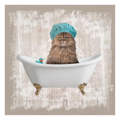 Kitty Baths 2