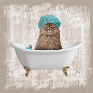 Kitty Baths 2 by Marcus Prime