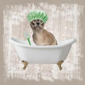 Kitty Baths 3 by Marcus Prime