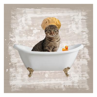 Kitty Baths 4