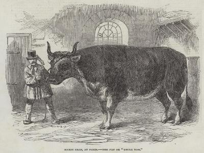 Mardi Gras, at Paris, the Fat Ox Uncle Tom--Giclee Print