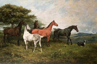 https://imgc.artprintimages.com/img/print/mares-and-foal-with-a-sheepdog_u-l-plbih20.jpg?p=0