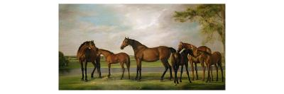 Mares and Foals Disturbed by an Approaching Storm, 1764-66-George Stubbs-Giclee Print