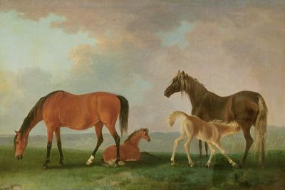 https://imgc.artprintimages.com/img/print/mares-and-foals_u-l-pwhxcm0.jpg?p=0