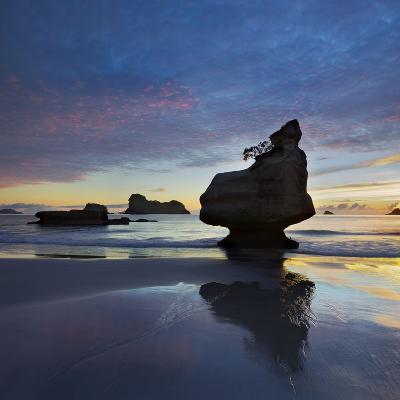 Mares Leg Cove, Coromadel Peninsula, Waikato, North Island, New Zealand-Rainer Mirau-Photographic Print