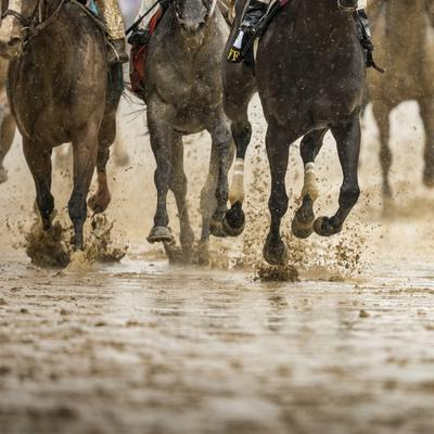 Horse racing on a muddy track