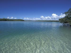 Lovers Key SRA, Ft. Myers Beach, Florida by Maresa Pryor