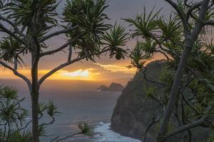 Pololu Valley Overlook at Sunrise, Hamakua Coast, Big Island, Hawaii by Maresa Pryor