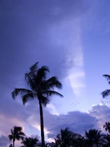 Sunset, Captiva Island, Florida by Maresa Pryor