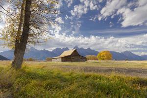T.A. Moulton Barn, Mormon Row, Grand Teton National Park, Wyoming, USA by Maresa Pryor