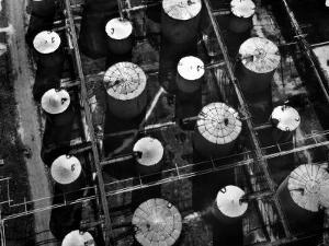 Aerial View of Storage Tanks at Humble Oil Co by Margaret Bourke-White