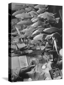 American Museum of Natural History Artist Brunner Working on Plaster Molds Made from Real Fish by Margaret Bourke-White