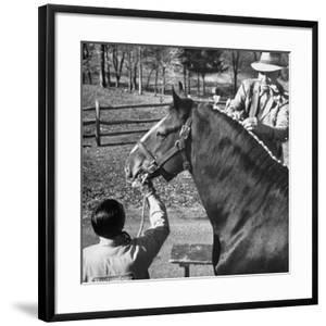 Clydesdale Horse, Used for Brewery Promotion Purposes, on the Anheuser-Busch Breeding Farm by Margaret Bourke-White