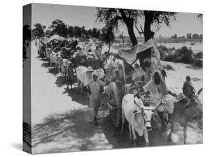 Convoy of Muslims Migrating from the Sikh State of Faridkot after the Division of India by Margaret Bourke-White