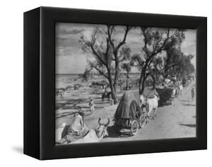 Convoy of Sikhs Migrating to East Punjab After the Division of India by Margaret Bourke-White
