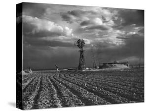 Dust Storm Rising over Farmer Walking Across His Plowed Field by Margaret Bourke-White