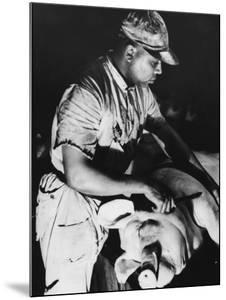 Knife-Wielding Butcher About to Cut Up Dead Pig at Swift Meat Packing Packington Plant by Margaret Bourke-White