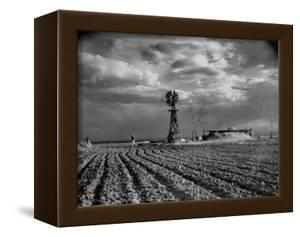 Picture from the Dust Bowl,With Deep Furrows Made by Farmers to Counteract Wind by Margaret Bourke-White
