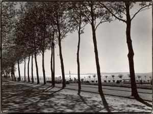 Tree Lined Street Along the Shore of Beautiful Shores of Lake Balaton by Margaret Bourke-White