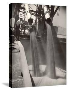 Workers Guiding Granary Filling Spouts as They Pour Tons of Wheat into River Barge for Shipment by Margaret Bourke-White