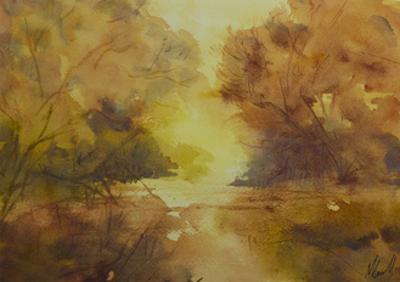 Golden light by Margaret Coxall